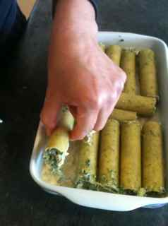 Easy Italian Recipes - Spinach Cannelloni arranged on a bed of white sauce