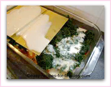 the last layer of this easy lasagne