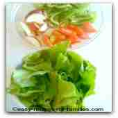 Beautiful green lettuce for easy salad recipes