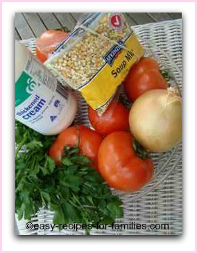 Ingredients for this easy tomato soup recipe