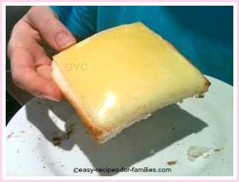 Cheese toast made in a toaster